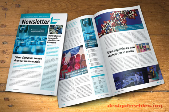 a free indesign a4 newsletter template