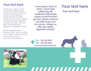 Veterinarian Brochure