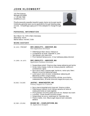 free resume builder websites and applications the grid system - Resume With Picture Template