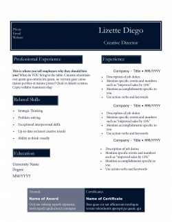 Blue resume template by TheGridSystem